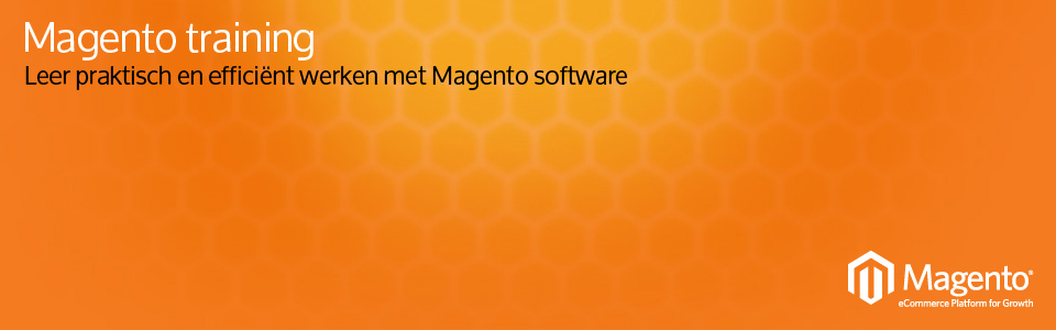Magento training